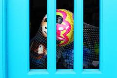Toy balls (Katrinitsa) Tags: paros2017 balls blue colors greece paros focus canon canoneos600d canoneosrebelt3i ef35mmf14lusm bokeh macro detail summer kids playground shop kid joy happy happiness mickey toy ball football net window door art artistic fun funny travel travelphotography inspiration imagination minnie mouse princess prison