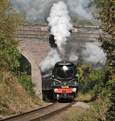 Great Central Railway Birstall Leicester 6th October 2017 (loose_grip_99) Tags: greatcentral railway railroad rail train steam engine locomotive leicestershire eastmidlands england uk gassteam gcr trains railways preservation transportation gala southern bulleid pacific 462 34081 92squadron bridge birstall october 2017
