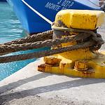 yellow safeguard thumbnail