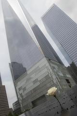 Rose (CURZU@) Tags: rosa rose wtc nyc usa 11s worldtradecenter newyork nuevayork memorial manhattan flor flower skyline canon eos ¨canon eos¨ 80d 80d¨¨canon 80d¨ rascacielos skylines 911 newyorkcity