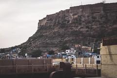 Rajasthan - Jodhpur - blue city-2