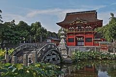 伊賀八幡宮 (Tama300) Tags: shrine bridge japan 神社 橋 日本