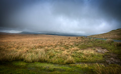 Cloudy Day On The Brecon Beacons (mak_9000) Tags: beaconbeacons wales uk mountains hills cloud wideangle