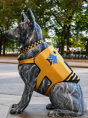 K9s for Cops Public Art Campaign - ? by Susan Clausen (Stuart Fujiyama) Tags: illinois chicago south loop michigan avenue k9s cops dog statue hilton susan clausen
