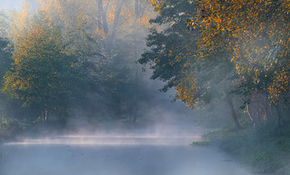 Morning Mist at the River