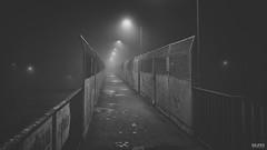 1631 (dejfex) Tags: dejfex dawid wereszczyński polska poland łuków lukow railway sony station stacja kolej kładka night noc outdoor black white a57 slta57 bw fog mgła lights w how