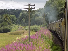 Memories of Summer (Jason Hood (One Million Views - THANKS!)) Tags: severnvalleyrailway