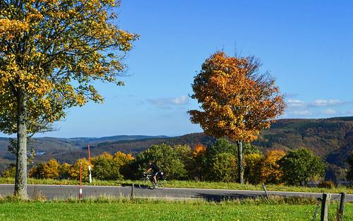 Biking natural park Eifel