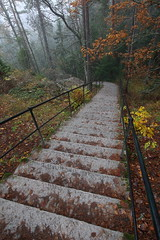 Downwards (jttoivonen) Tags: nature stairs trees forest mountain finland creativecommons colors mist fog autumn