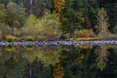 Merced River Fall Reflection (Jeffrey Sullivan) Tags: merced river refletion fall colors yosemite national park california usa night landscape nature photography canon eos 5dmarkiii jeff sullivan photo copyright october 2012
