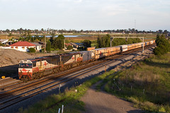 Last Rays of Light (PJ Reading) Tags: rail railway train transport transportation travel track tracks rightofway diesel hunter valley newcastle newsouthwales nsw huntervalley northcoast centralcoast australia aus sct intermodal freight goods cargo specialised thornton afternoon sunset evening brisbane melbourne mb9 locomotive