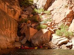 hidden-canyon-kayak-lake-powell-page-arizona-southwest-9581