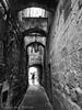 Vicolo del Popolo - Orvieto (frillicca) Tags: 2017 alley architecture architettura bn bw biancoenero blackandwhite medieval medievale medioevo monochrome monocromo orvietotr ottobre panasoniclumixlx100 vicolo vicolodelpopolo