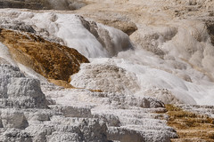 Mammoth Hot Springs_T3W0573 (Alfred J. Lockwood Photography) Tags: nature landscape mammothhotsprings travertine geothermalrunoff yellowstonenationalpark summer morning wyoming shapes color texture patterns