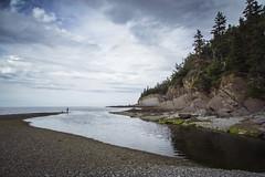 IMG_4967 (Les mondes engloutis) Tags: canada québec gaspésie nature landscape paysage mer sea river rivière