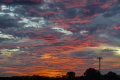 Autumn Sunset (gopper) Tags: sunset scene scenery cloud clouds red swindon wiltshire silhouette nikon d600 sigma sigma105mm 105mm fullframe fx amazing stunning reds orange wow october autumn fall 2017 uk gb british sky