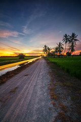 Sunset at Nibong Tebal (Rizal Zawawi) Tags: rice sunlight tree meadow agriculture green travel view yellow wheat scenery skyline orange light farm sun paradise asia seed weather relax panorama sunset outdoors tourism plants golden path harvest stunning economy perspective farmland field summer plantation farming agricultural malaysia growth sky beautiful industry nature paddy palm asian road landscape ray background river reflection