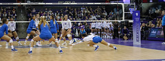 UW UCLA-FT4I0432 (Pacific Northwest Volleyball Photography) Tags: volleyball ncaa pac12 pac12vb uwhuskies washington ucla
