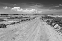 The Road To Arikok (_Robert C_) Tags: aruba arikok bw d800 sigma 2470mm desertisland