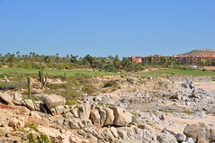 Cabo 2017 284 (bigeagl29) Tags: cabo2017 cabo del sol golf course club ocean san lucas jose mexico beach scenic scenery landscape