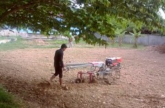 starting the first furrow. (rodeochiangmai) Tags: tractors farming plowing