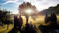 Window View Home (Bugtris) Tags: burgistein bern schweiz ch
