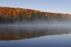 Recto-Verso (Renald Bourque) Tags: autumn automne nature photo quebec rectoverso