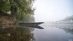 réflexion (Bruno. Thomé) Tags: pentaxk1 irix15mmf24 reflet rivière vienne chinon brume paysage france