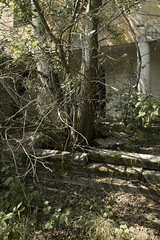 _MG_1538 (daniel.p.dezso) Tags: kiskunhalas laktanya orosz kiskunhalasi halasi former soviet barrack elhagyatott urbex reclaim abandoned military base militarybase
