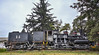 Locomotora Shay N°14. The Braden Copper Company Railway (Alfredo Navarro Recabal) Tags: shay locomotorashay rancagua