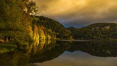 Derniers rayons (Fred&rique) Tags: lumixfz1000 hdr photoshop raw lac bonlieu jura eau soleil couchant reflets lumière couleurs arbres automne paysage nature bancs