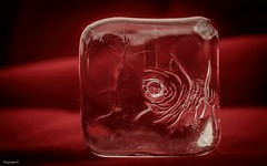 #BeautifulGeometry (YᗩSᗰIᘉᗴ HᗴᘉS +8 500 000 thx❀) Tags: beautifulgeometry flickrfriday geometry cube ice clear transparent red focus focusstacking macro hensyasmine sidelit
