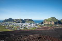 Heimaey / On the Heldfell (Toine B.) Tags: heimaey vestmann vestmannaeyjar iceland islande island lava lave 1973eruption d750 tamron tamronsp2470mmf28divcusd landscape paysage