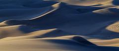 Folding light (Luminous☆West) Tags: sigma sd sdq sdqh quattro h sdquattroh foveon 85mm f14 14 dg art sdqh1340 luminouswest luminous west sand dunes