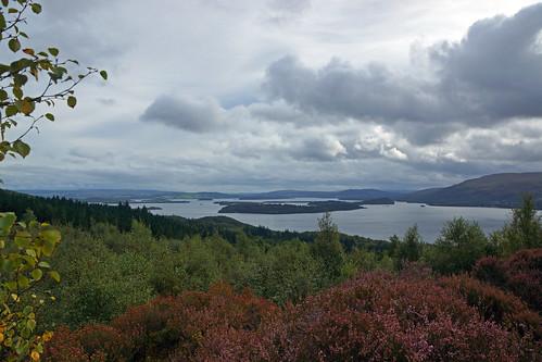 2017-08-26 09-09 Schottland 773 Loch Lomond, Sallochy Hike