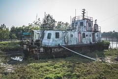 Kolkata - Sunderban tour-50
