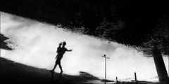 F_47A0980-BW-Canon 5DIII-Tamron 28-300mm-May Lee 廖藹淳 (May-margy) Tags: maymargy bw 黑白 心情的故事 人像 水灘 下雨 倒影 燈桿 樑柱 街拍 streetviewphotography 天馬行空鏡頭的異想世界 mylensandmyimagination 線條造型與光影 linesformandlightandshadow 心象意象與影像 naturalcoincidencethrumylens 幾何線條 humaningeometry 點人 台北市 台灣 中華民國 taiwan repofchina f47a0980bw walkingintherain portrait puddle raining reflection blur bokeh 模糊 散景 canon5diii tamron28300mm maylee廖藹淳