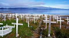 Lost (little_frank) Tags: cemetery nuuk greenland graveyard tomb cross sea ocean landscape scenery past memory mourn mourning rip kalaallitnunaat grønland arctic remember remembering peace peaceful silence silent remains lives burialground christian crosses graves coast restinpeace requiescatinpace died dead lost death godthab