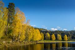 Autumn in Oslo (frankps) Tags: bogstadlake bogstad bogstadvannet oslo autumn lake water sky