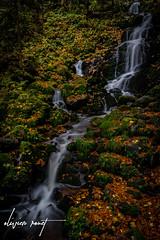 Cascade De la serva (Olivier Rouet Photograhie) Tags: cascade france nikon longexposure d3300 eau sigma nature water autumn colors couleurs automne europe expositionlongue waterfall