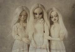 sisters (dolls of milena) Tags: bjd abjd resin doll unoa alchemic labo sist elfdoll yumi portrait