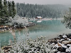 "Last Day of ""Summer"" at Lake Louise, Banff Nt'l Park (tvdflickr) Tags: lakelouise banff banffnationalpark canada snow water trees rocks ice canoe cabin panasonic lx100 lumix banffnationalparkcanada"