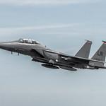 McDonnell Douglas F-15E Strike Eagle thumbnail