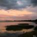 Pastel Morning - Matin pastel