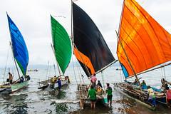 2014-11-09 (leifpia) Tags: sailing sailingcompetition sailingrace papuanewguinea people canoeandkundufestival sailboat