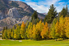 Fall Color In The Eastern Sierra (Mimi Ditchie) Tags: easternsierra fall fallcolor junelake junelakeloop mammothlakes mammoth autumn easternsierranevada californiaeasternsierranevada california
