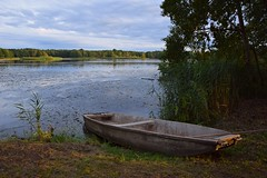 summer moods (JoannaRB2009) Tags: summer mood nature boat sunset landscape view pond water coast plants miliczponds stawymilickie dolinabaryczy lowersilesia dolnyśląsk polska poland