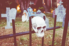 Halloween House Decorations In Nolansville, Tennessee (Peter Greenway) Tags: jackolanterns decorations urban trickortreat flickr celebration residential pumpkins allhallowseve inflatables spooky tennessee halloween fence graveyard skull