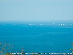 S1T-S1trail-la-corsa-della-bora-anello-sorgente-santa-croce__0043