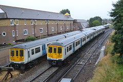 Thameslink 319007 & 319445 (Will Swain) Tags: bellingham station 29th july 2017 class 319 greater london capital city south east train trains rail railway railways transport travel uk britain vehicle vehicles country england english goahead group thameslink 319007 319445 7 445 45